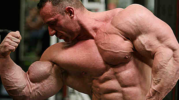 Programme musculation biceps